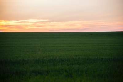Gizmodo: IGI's purchase of the Agricultural Land Company is a big deal